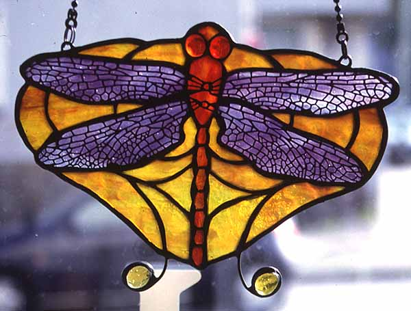 DRAGONFLY_PANEL_2